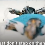 The Robotic ants or ants robots