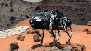 SpaceBok robot